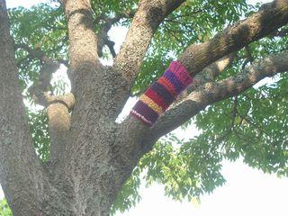 Treecozy